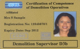 Demolition Supervisor